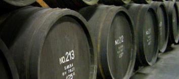 玄海酒造 樽貯蔵